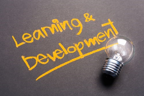 Learning and Development with lightbulb